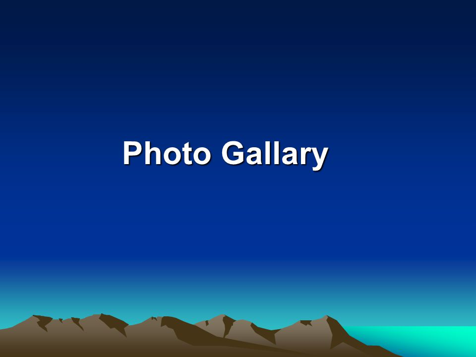 Photo Gallary Photo Gallary
