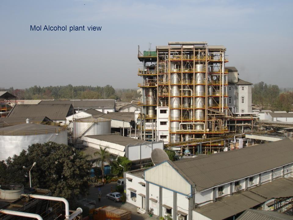 Mol Alcohol plant view