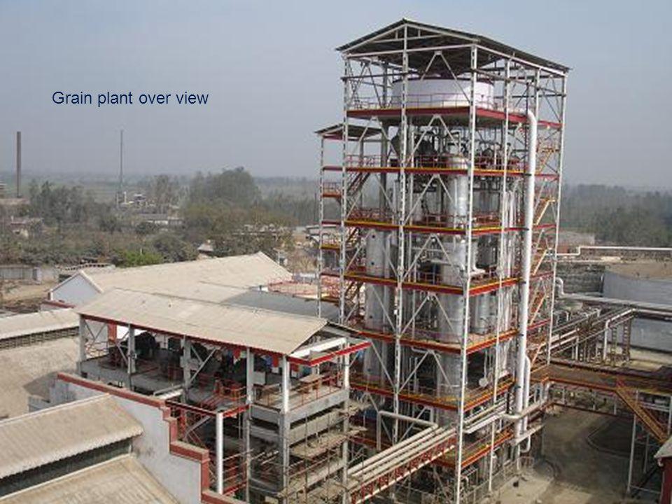 Grain plant over view