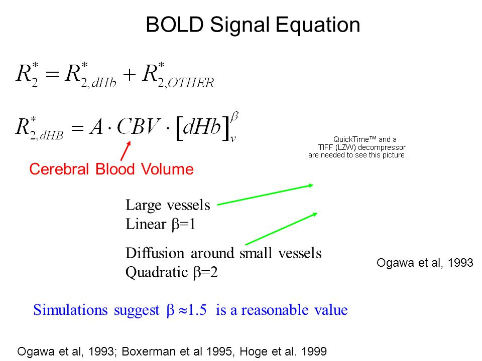 Experimental Protocol 2x Block design visual stimulus 20s60s %∆CBF %∆BOLD 2x 5% CO 2 Scans 2min air 3min CO 2 2min air M %∆CMRO 2