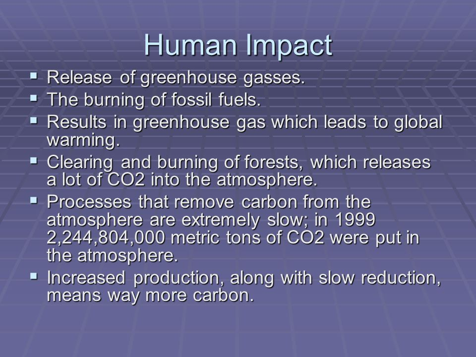 Human Impact  Release of greenhouse gasses.  The burning of fossil fuels.  Results in greenhouse gas which leads to global warming.  Clearing and