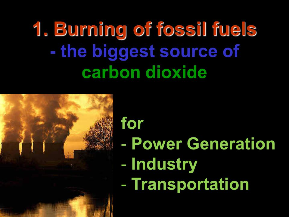 2. Livestock 2. Livestock - the biggest source of methane and nitrous oxide for human's food