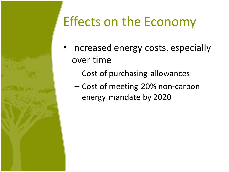 Effects on the Economy Increased energy costs, especially over time – Cost of purchasing allowances – Cost of meeting 20% non-carbon energy mandate by