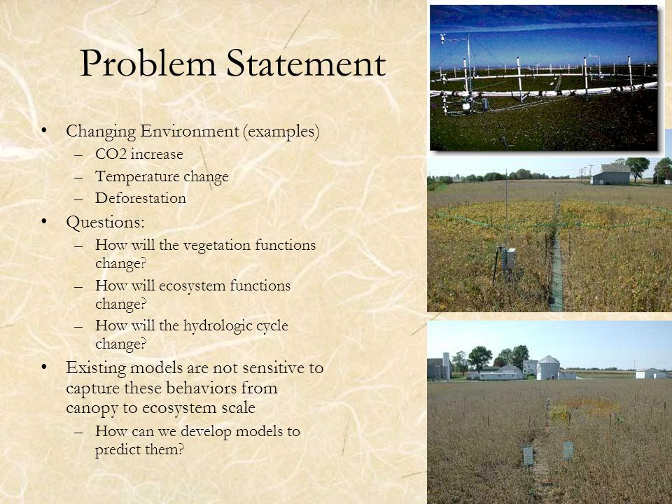 2 Problem Statement Changing Environment (examples) –CO2 increase –Temperature change –Deforestation Questions: –How will the vegetation functions change.