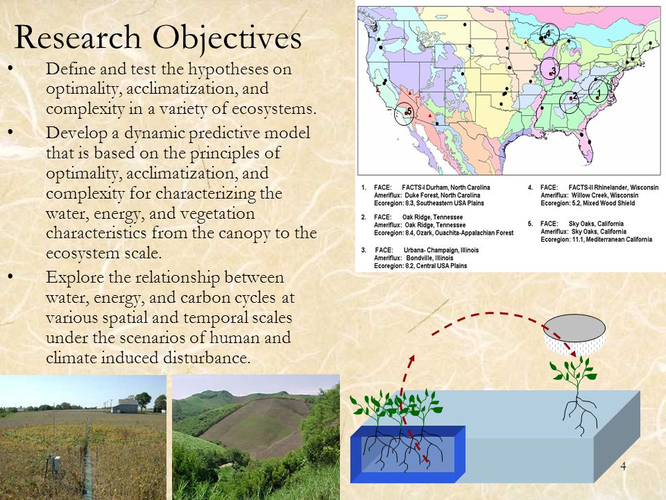 4 Research Objectives Define and test the hypotheses on optimality, acclimatization, and complexity in a variety of ecosystems. Develop a dynamic pred