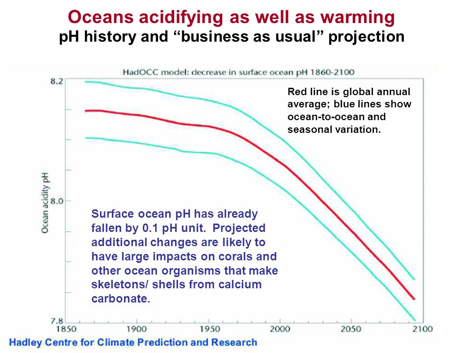 "Oceans acidifying as well as warming pH history and ""business as usual"" projection Red line is global annual average; blue lines show ocean-to-ocean a"