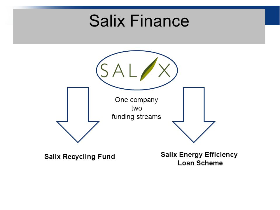 Salix Finance One company two funding streams Salix Recycling Fund Salix Energy Efficiency Loan Scheme