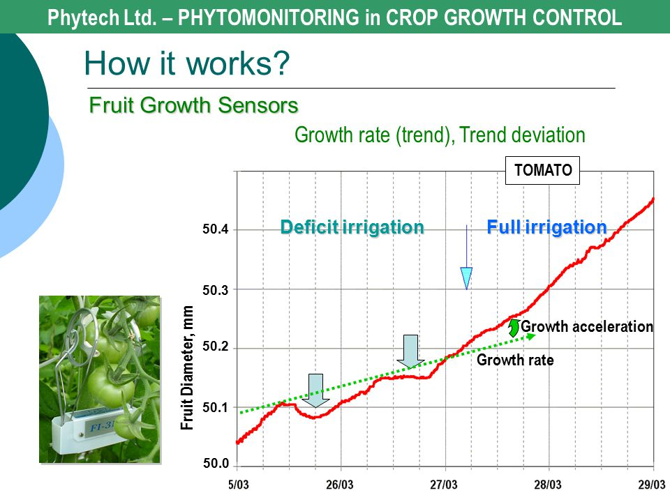 Deficit irrigation Full irrigation TOMATO Fruit Diameter, mm 50.0 50.1 50.2 50.3 50.4 Growth rate Growth acceleration Growth rate (trend), Trend devia