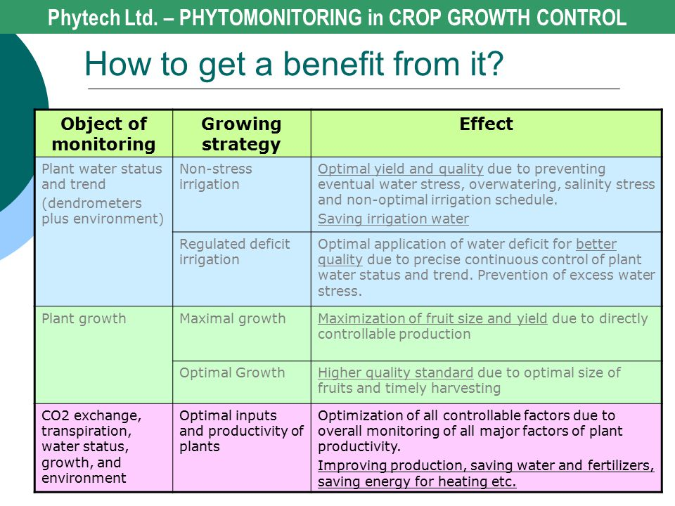 Phytech Ltd. – PHYTOMONITORING in CROP GROWTH CONTROL How to get a benefit from it? Object of monitoring Growing strategy Effect Plant water status an