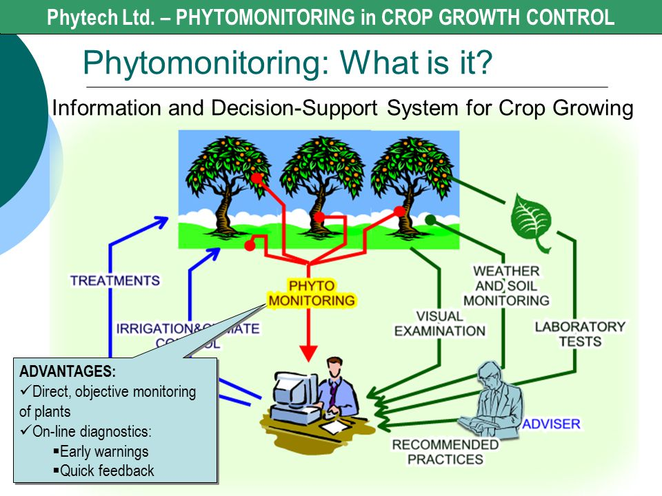 Phytech Ltd. - CROP GROWTH CONTROL Phytomonitoring: What is it? Phytech Ltd. – PHYTOMONITORING in CROP GROWTH CONTROL Information and Decision-Support