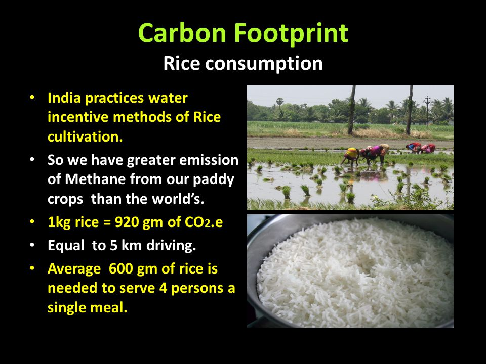 Carbon Footprint Rice consumption India practices water incentive methods of Rice cultivation. So we have greater emission of Methane from our paddy c