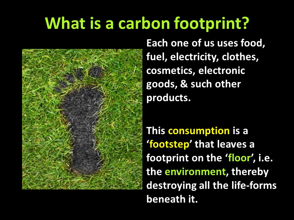 Carbon Footprint Utilities & Infrastructure All the industrial & commercial activity, public utilities and infrastructure exist for the service of the individual.