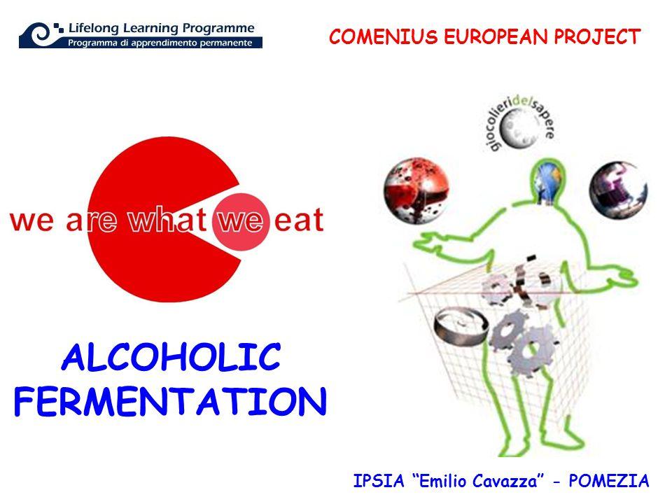 COMENIUS EUROPEAN PROJECT IPSIA Emilio Cavazza - POMEZIA ALCOHOLIC FERMENTATION