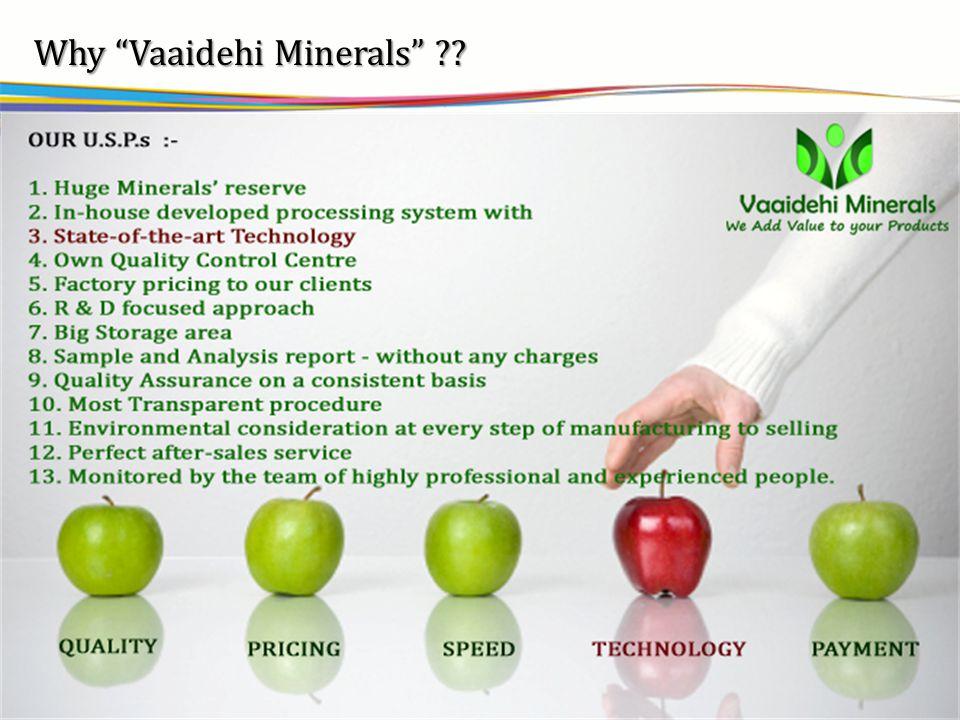 vsbb Why Vaaidehi Minerals