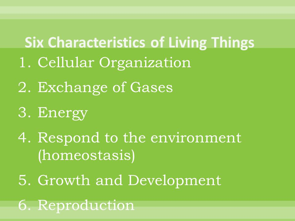1.Cellular Organization 2.Exchange of Gases 3.Energy 4.Respond to the environment (homeostasis) 5.Growth and Development 6.Reproduction