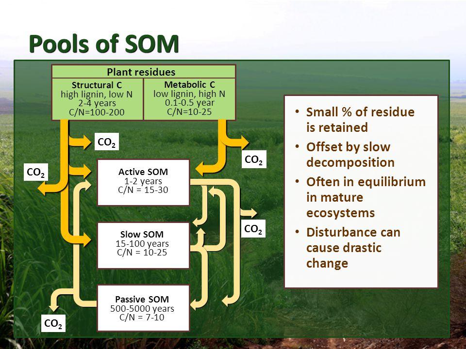 Pools of Soil Organic Matter (cont.)