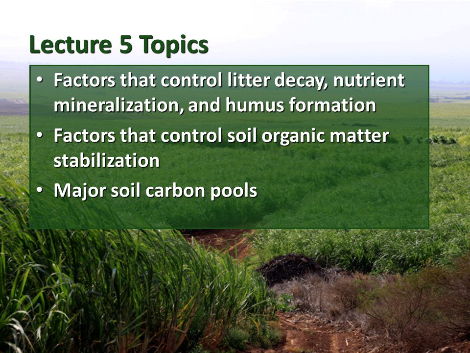 Review - What is Soil Organic Matter.What is soil organic matter.