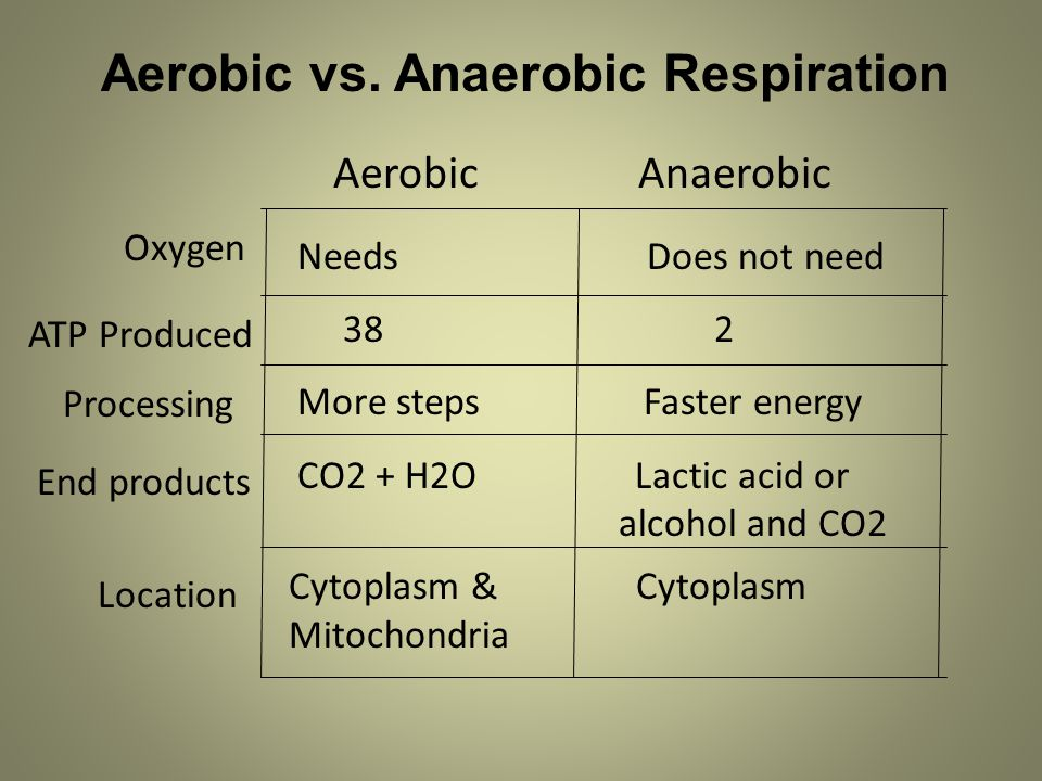 Aerobic vs. Anaerobic Respiration Aerobic Anaerobic Needs Does not need 38 2 More steps Faster energy CO2 + H2O Lactic acid or alcohol and CO2 Oxygen