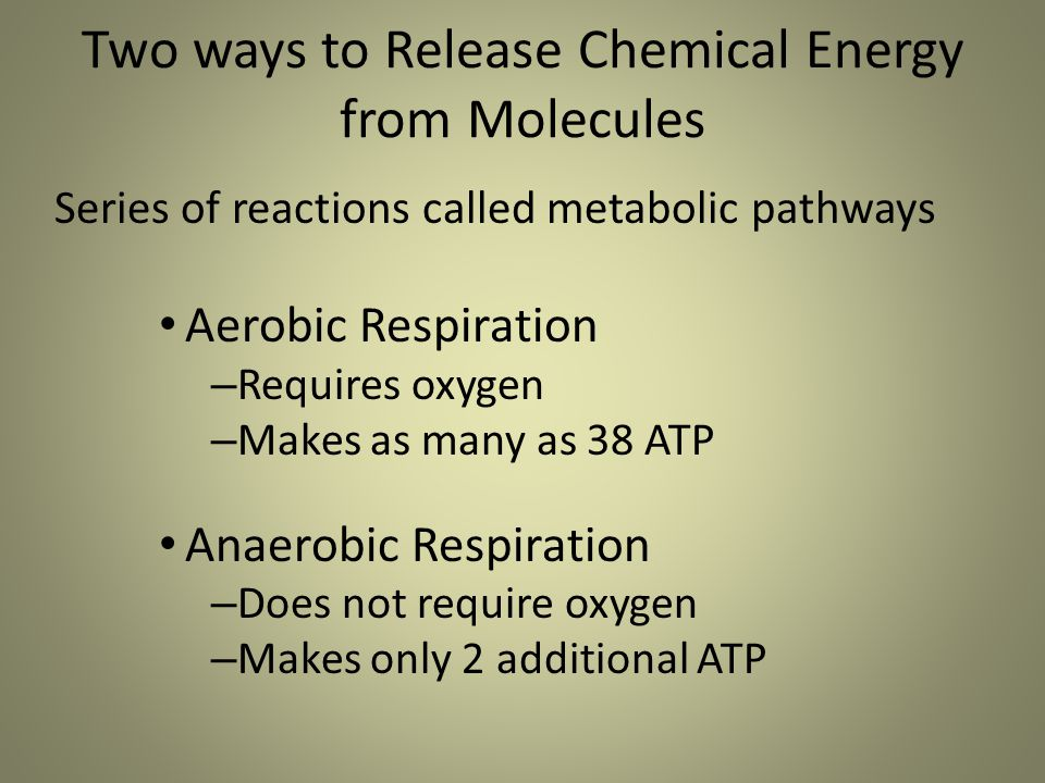 Two ways to Release Chemical Energy from Molecules Series of reactions called metabolic pathways Aerobic Respiration – Requires oxygen – Makes as many