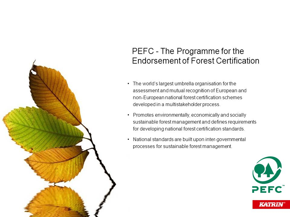 The world's largest umbrella organisation for the assessment and mutual recognition of European and non-European national forest certification schemes developed in a multistakeholder process.