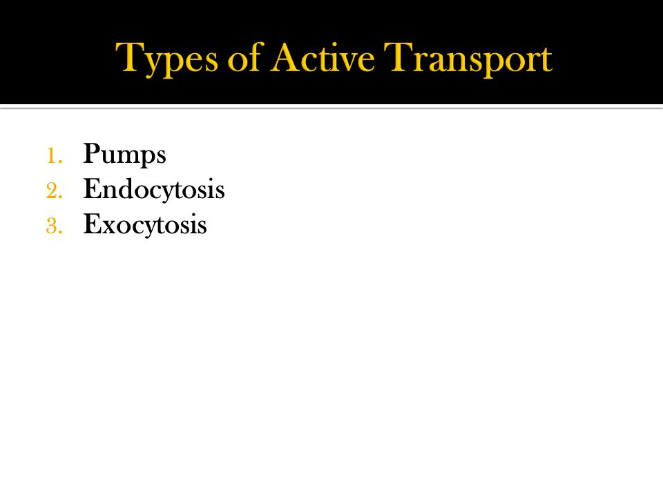 1. Pumps 2. Endocytosis 3. Exocytosis