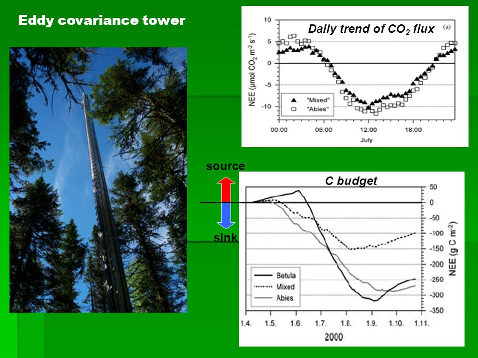 Eddy covariance tower Daily trend of CO 2 flux sink source C budget