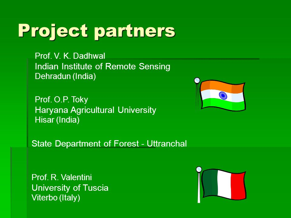 Outline:  Rules governing LULUCF (Land Use, Land Use Change and Forestry) activities within CDM projects  Pilot studies in the framework of italian-indian collaboration