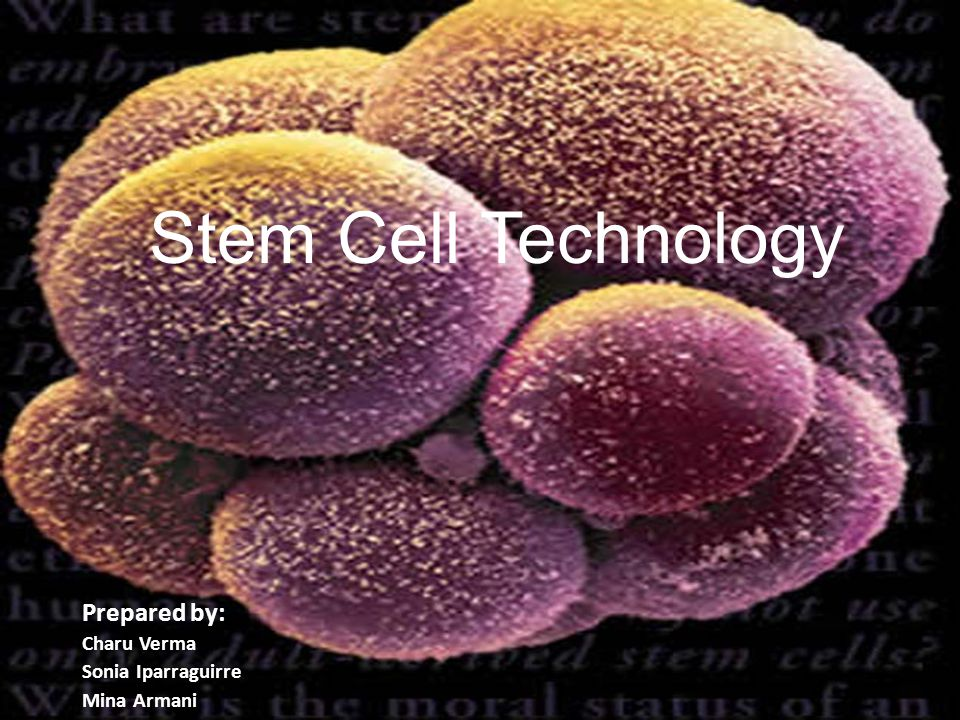 Stem Cell Technology Prepared by: Charu Verma Sonia Iparraguirre Mina Armani