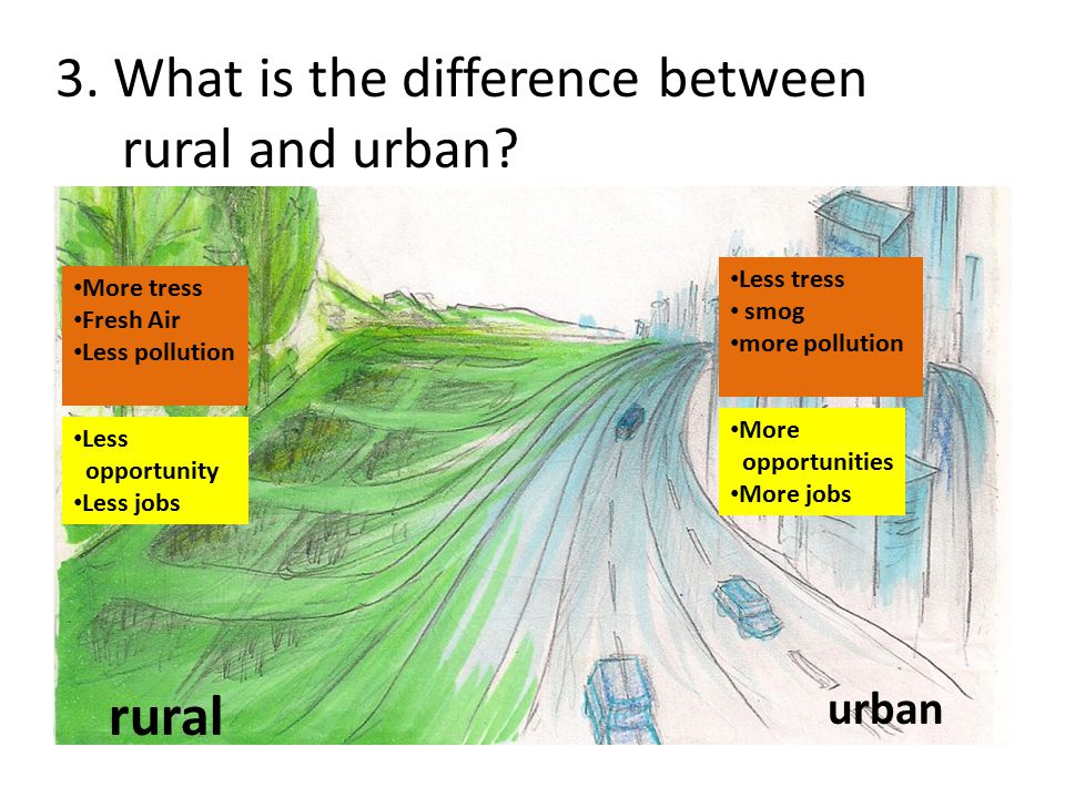3. What is the difference between rural and urban? rural urban More tress Fresh Air Less pollution Less tress smog more pollution Less opportunity Les