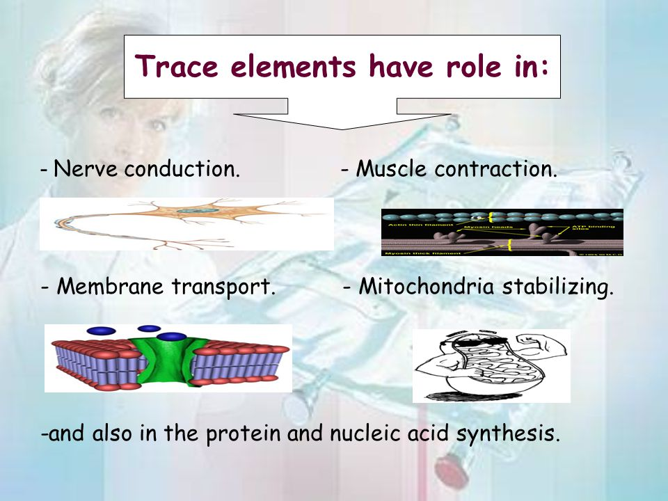 - Nerve conduction. - Muscle contraction. - Membrane transport. - Mitochondria stabilizing. -and also in the protein and nucleic acid synthesis. Trace