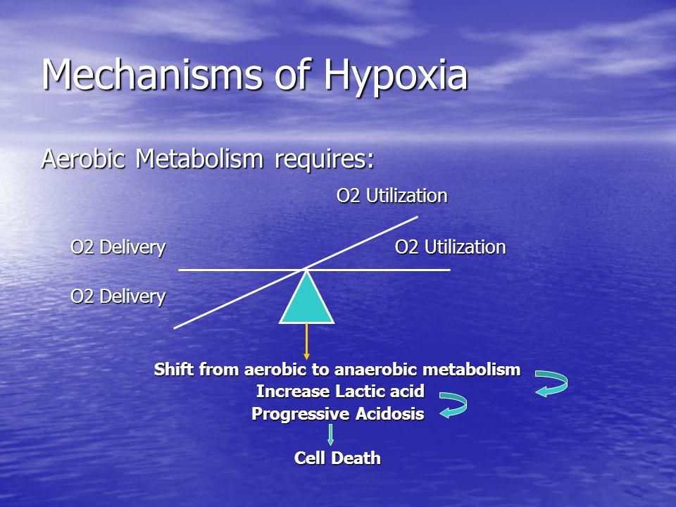 Mechanisms of Hypoxia Aerobic Metabolism requires: O2 Utilization O2 Utilization O2 Delivery O2 Utilization O2 Delivery O2 Utilization O2 Delivery O2