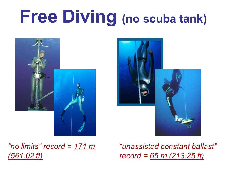 "Free Diving (no scuba tank) ""no limits"" record = 171 m (561.02 ft) ""unassisted constant ballast"" record = 65 m (213.25 ft)"