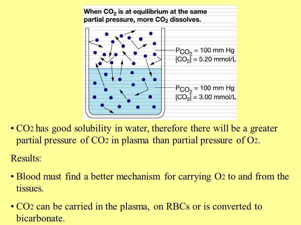 CO 2 has good solubility in water, therefore there will be a greater partial pressure of CO 2 in plasma than partial pressure of O 2. Results: Blood m