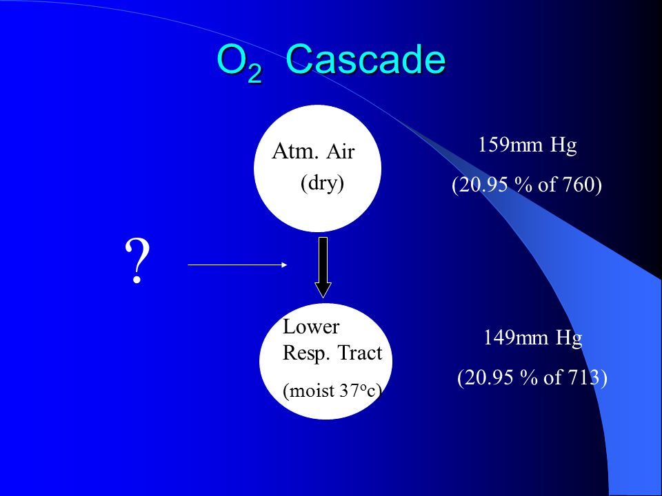 O 2 Cascade Atm. Air (dry) Lower Resp. Tract (moist 37 o c) 159mm Hg (20.95 % of 760) 149mm Hg (20.95 % of 713) ?