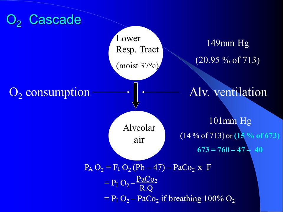 O 2 Cascade 149mm Hg (20.95 % of 713) O 2 consumption Lower Resp. Tract (moist 37 o c) Alv. ventilation Alveolar air 101mm Hg (14 % of 713) o r (15 %