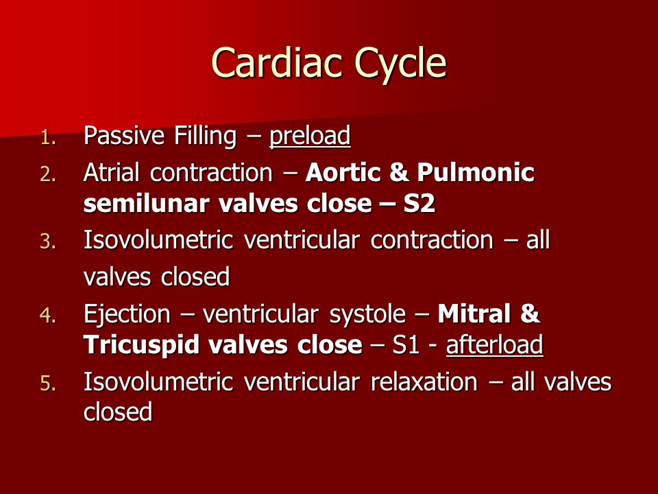 Cardiac Cycle 1. Passive Filling – preload 2. Atrial contraction – Aortic & Pulmonic semilunar valves close – S2 3. Isovolumetric ventricular contract