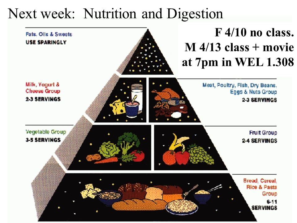 Next week: Nutrition and Digestion F 4/10 no class. M 4/13 class + movie at 7pm in WEL 1.308