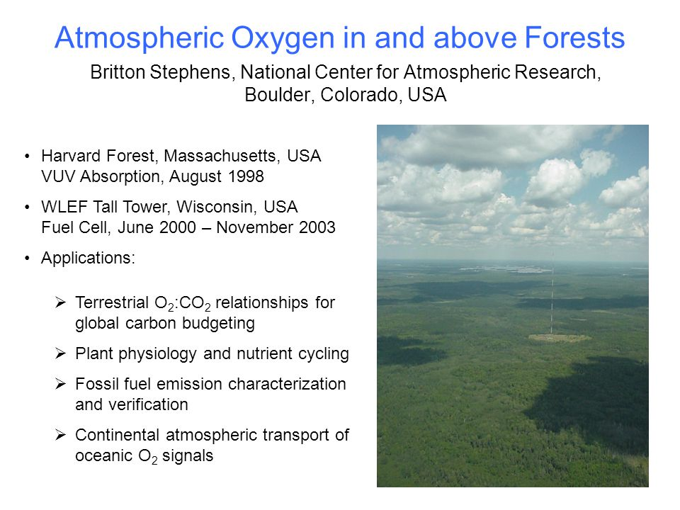 Atmospheric Oxygen in and above Forests Britton Stephens, National Center for Atmospheric Research, Boulder, Colorado, USA Harvard Forest, Massachusetts, USA VUV Absorption, August 1998 WLEF Tall Tower, Wisconsin, USA Fuel Cell, June 2000 – November 2003 Applications:  Terrestrial O 2 :CO 2 relationships for global carbon budgeting  Plant physiology and nutrient cycling  Fossil fuel emission characterization and verification  Continental atmospheric transport of oceanic O 2 signals