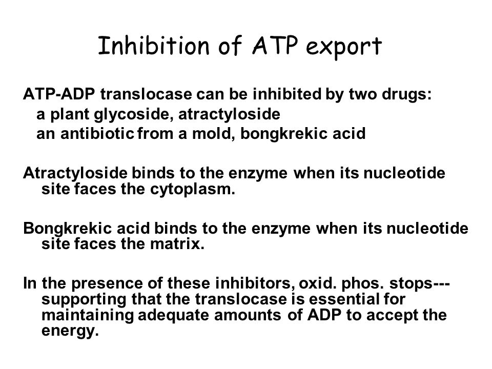 Inhibition of ATP export ATP-ADP translocase can be inhibited by two drugs: a plant glycoside, atractyloside an antibiotic from a mold, bongkrekic aci
