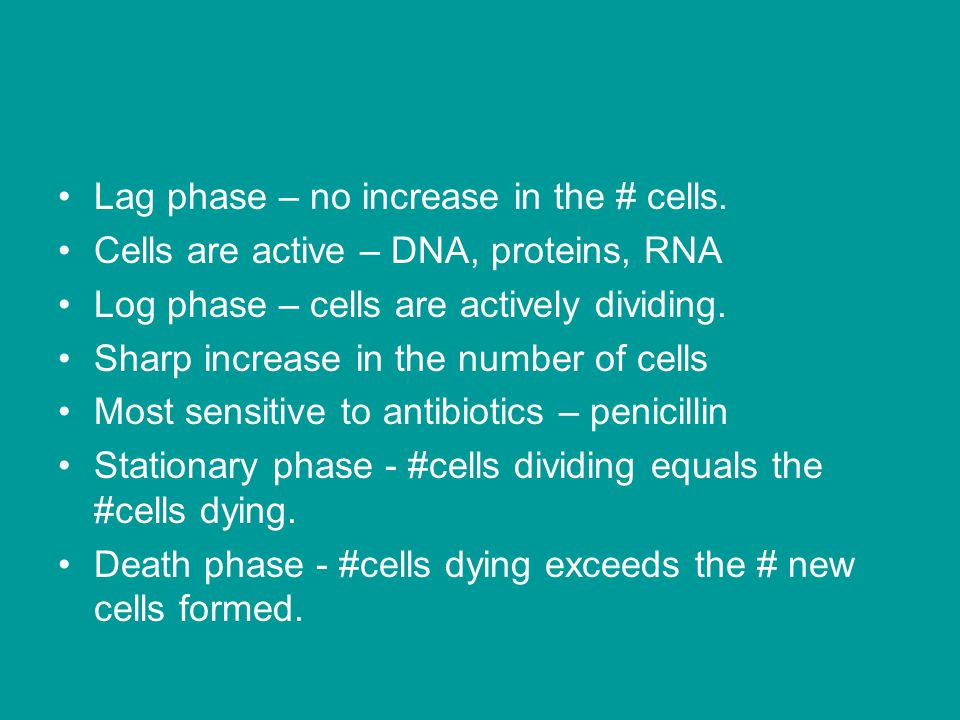 Lag phase – no increase in the # cells. Cells are active – DNA, proteins, RNA Log phase – cells are actively dividing. Sharp increase in the number of