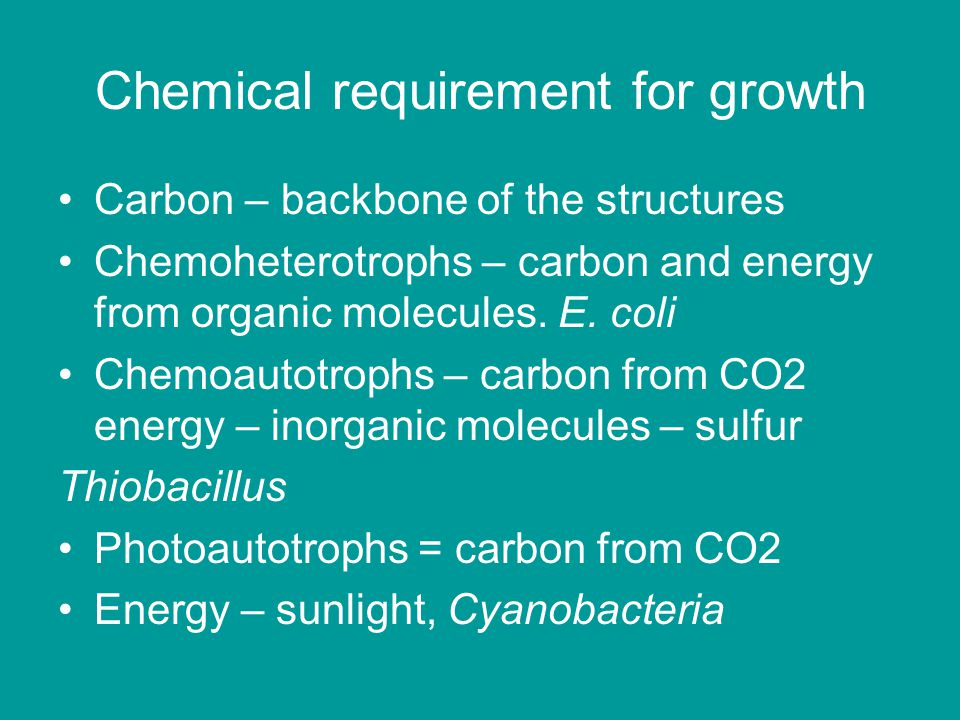 Chemical requirement for growth Carbon – backbone of the structures Chemoheterotrophs – carbon and energy from organic molecules. E. coli Chemoautotro