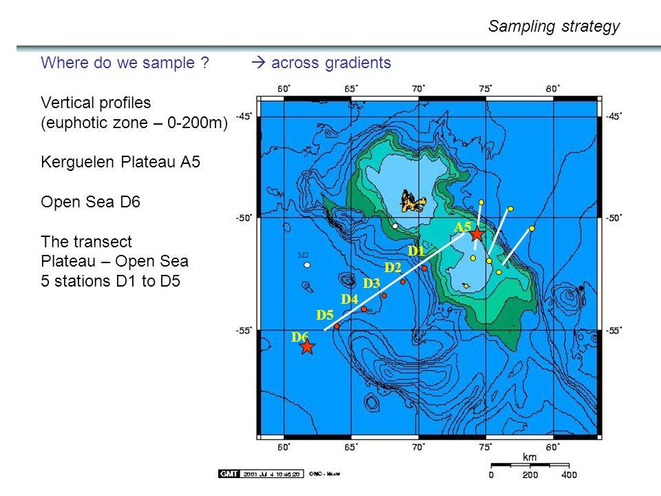 M2 D6 D5 D4 D3 D2 D1 A5 Where do we sample ?  across gradients Vertical profiles (euphotic zone – 0-200m) Kerguelen Plateau A5 Open Sea D6 The transe