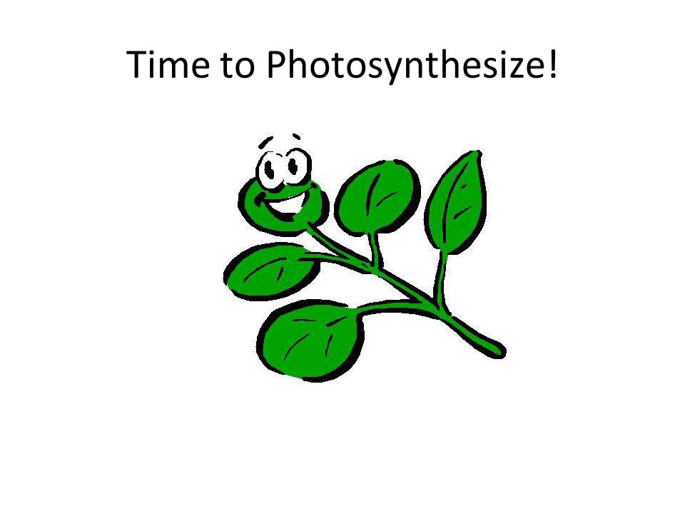 O2 + some ATPsugarsH2O H+ & e- CO 2 Light Step 1: Light-Dependent Reactions NADP+ NADPH What is the goal of photosynthesis?