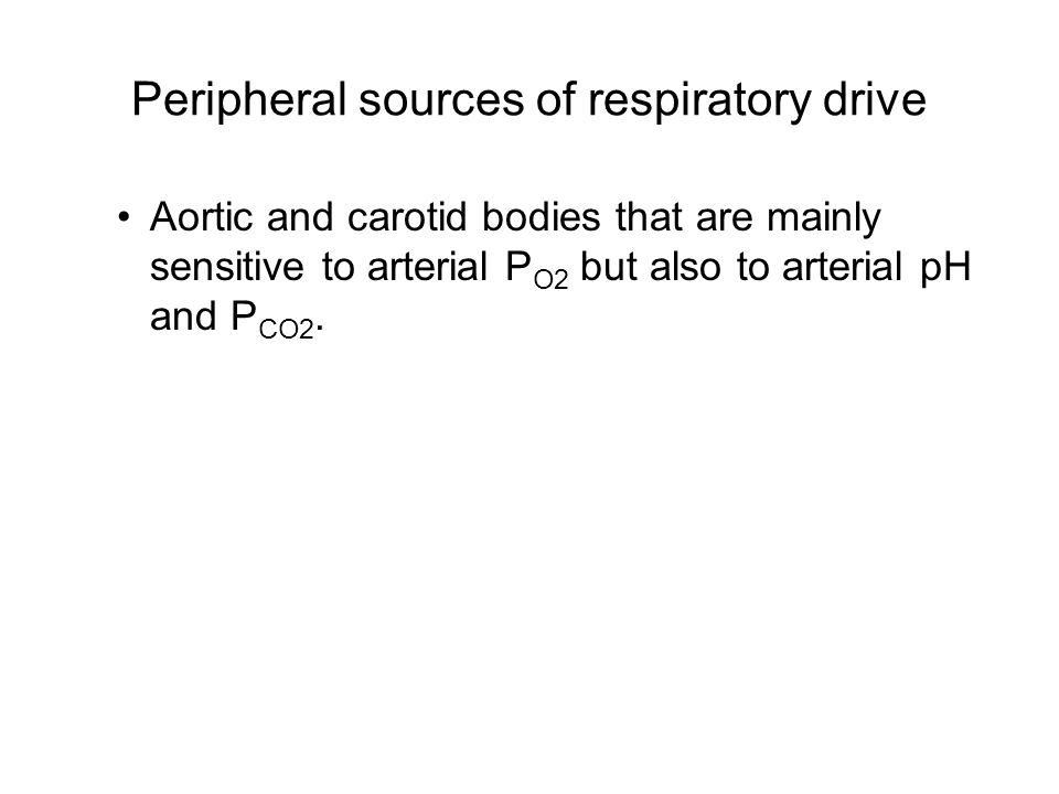 Peripheral sources of respiratory drive Aortic and carotid bodies that are mainly sensitive to arterial P O2 but also to arterial pH and P CO2.