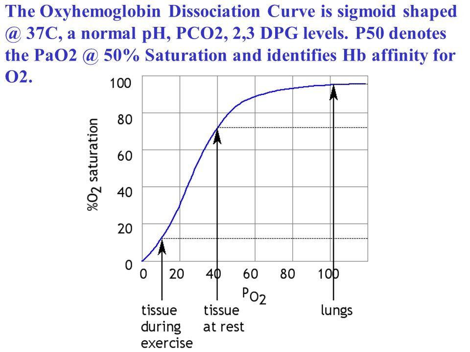 The Oxyhemoglobin Dissociation Curve is sigmoid shaped @ 37C, a normal pH, PCO2, 2,3 DPG levels.