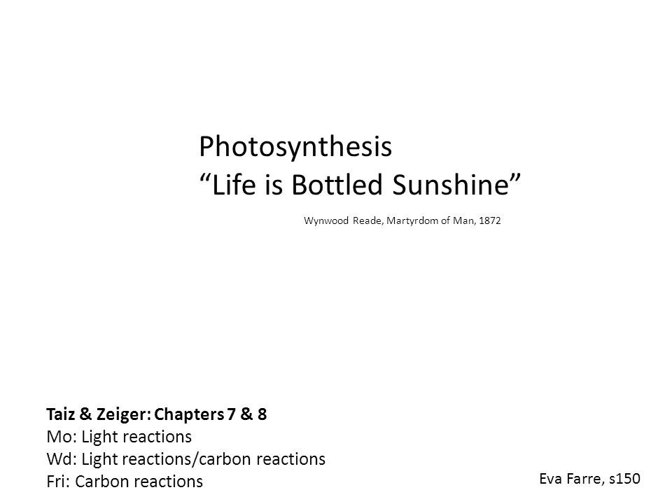 "Photosynthesis ""Life is Bottled Sunshine"" Wynwood Reade, Martyrdom of Man, 1872 Eva Farre, s150 Taiz & Zeiger: Chapters 7 & 8 Mo: Light reactions Wd:"