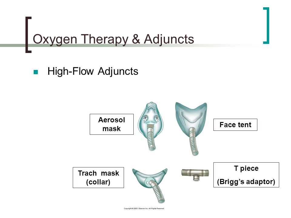 Oxygen Therapy & Adjuncts High-Flow Adjuncts Aerosol mask Face tent Trach mask (collar) T piece (Brigg's adaptor)
