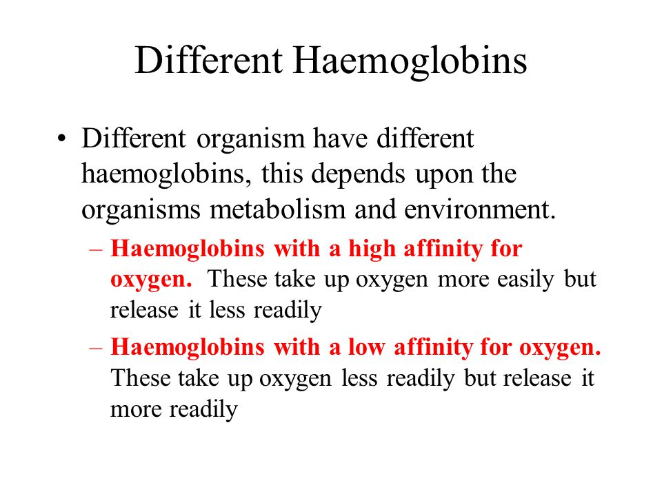 Different Haemoglobins Different organism have different haemoglobins, this depends upon the organisms metabolism and environment. –Haemoglobins with