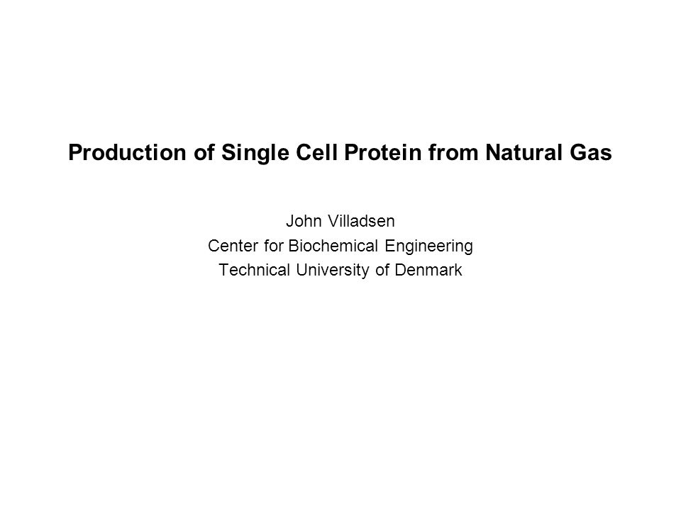 Production of Single Cell Protein from Natural Gas John Villadsen Center for Biochemical Engineering Technical University of Denmark