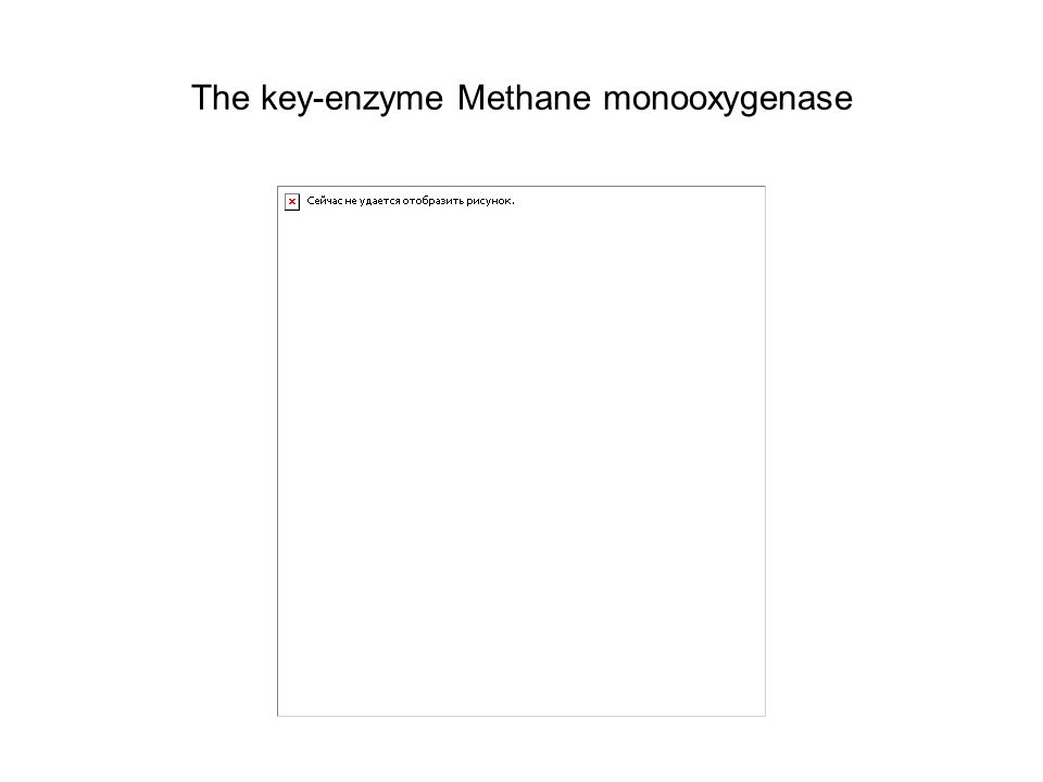The key-enzyme Methane monooxygenase